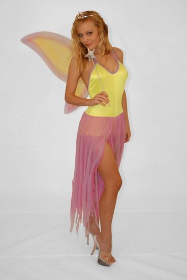 Fairy-Dancing Fairy Costume