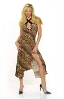 Animal Print Gypsy Dress